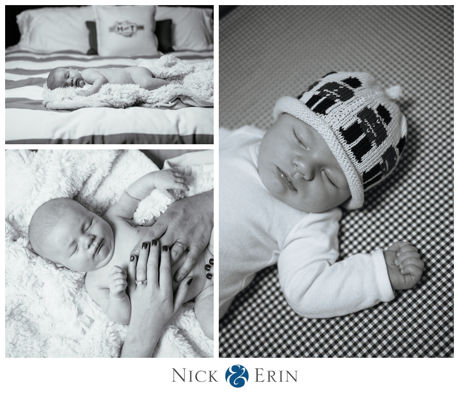 Annandale Newborn