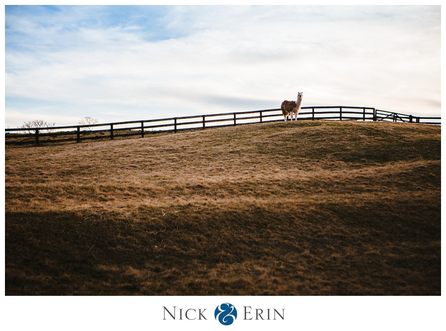 Donner_Photography_Engagement_Becca_Michael_0016
