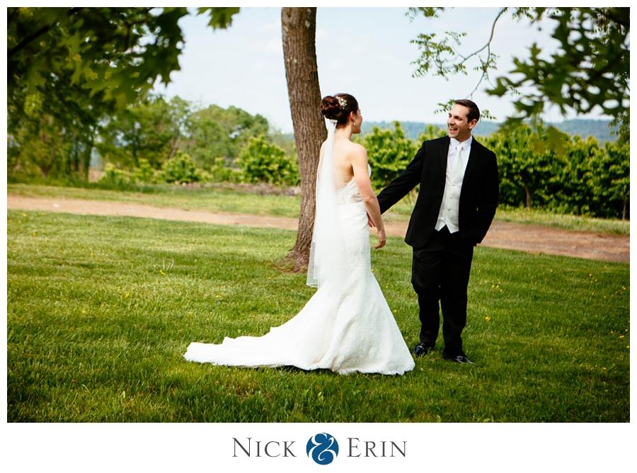 Donner_Photography_Bluemont Vineyard_Wedding_Stephanie_and_Chris_0019