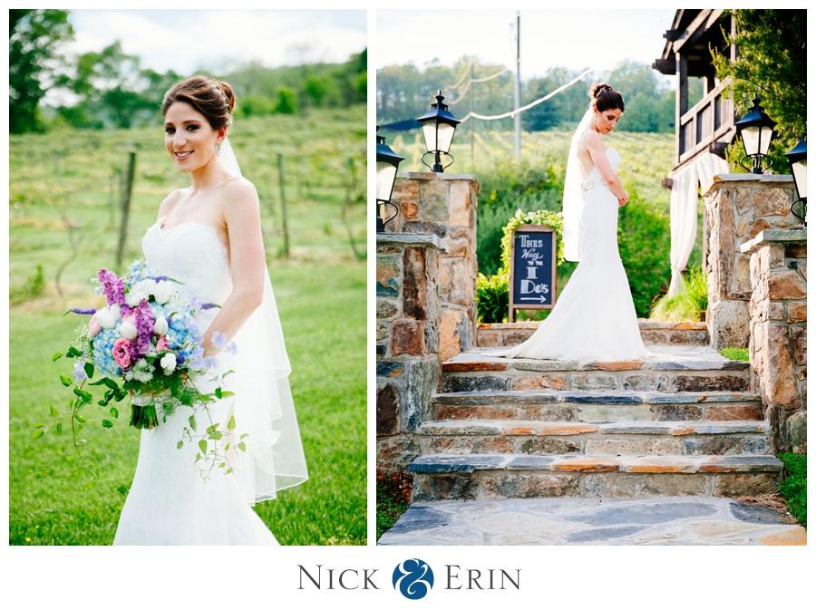Donner_Photography_Bluemont Vineyard_Wedding_Stephanie_and_Chris_0025