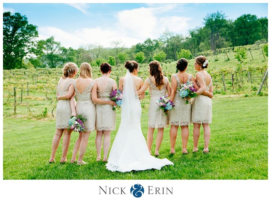 Donner_Photography_Bluemont Vineyard_Wedding_Stephanie_and_Chris_0026