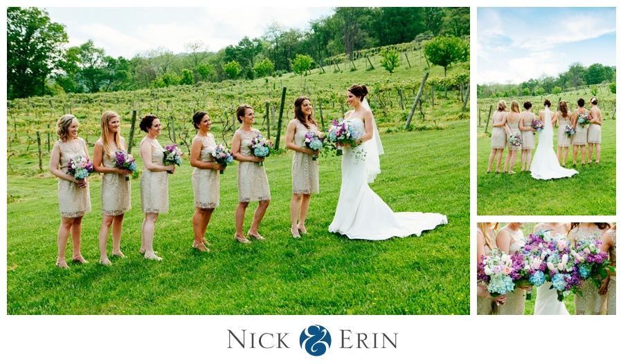 Donner_Photography_Bluemont Vineyard_Wedding_Stephanie_and_Chris_0027