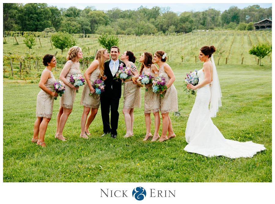Donner_Photography_Bluemont Vineyard_Wedding_Stephanie_and_Chris_0027b
