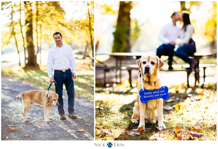 Donner_Photography_Great Fall Engagement_Samantha and Bill_0023