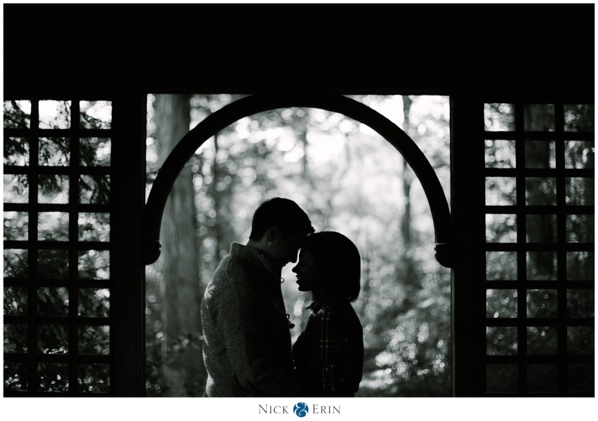 Donner_Photography_Washington DC Engagement_Candace and Max_0010a