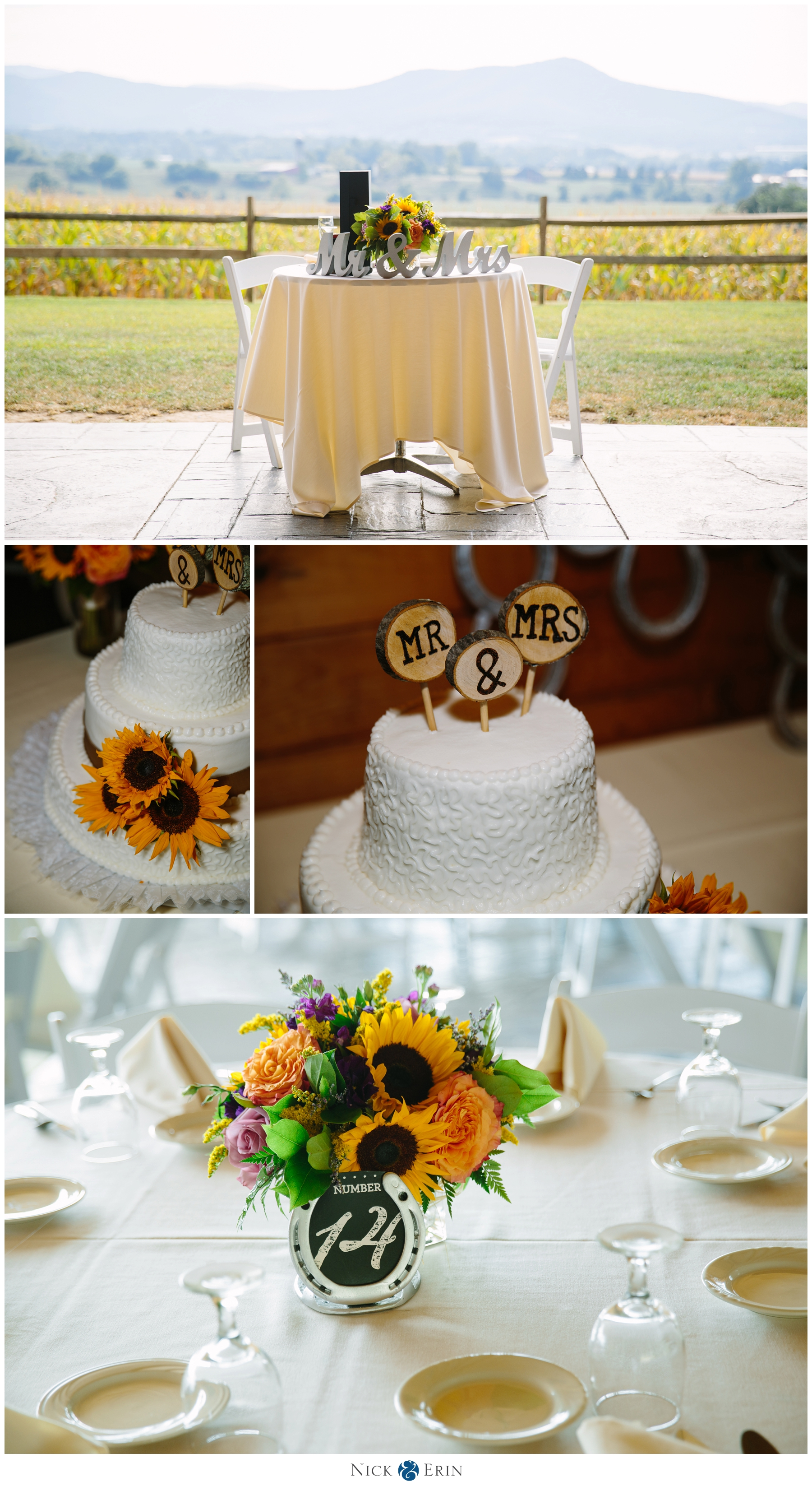 donner_photography_megan-corey-luray-virginia-wedding_0046